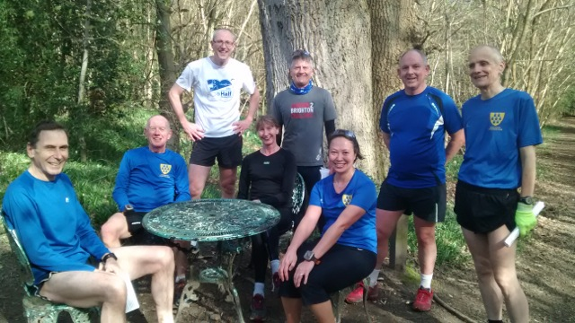 Trail runners at Mariners Hill